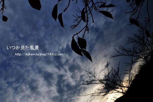 D3C_0855ri-ss.jpg