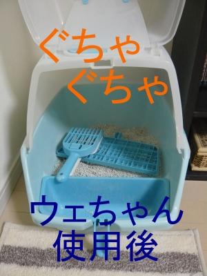 022_20131031182118389.jpg