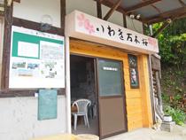 いわき万本桜プロジェクト1