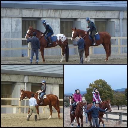 ヘレナ国際乗馬倶楽部イメージ