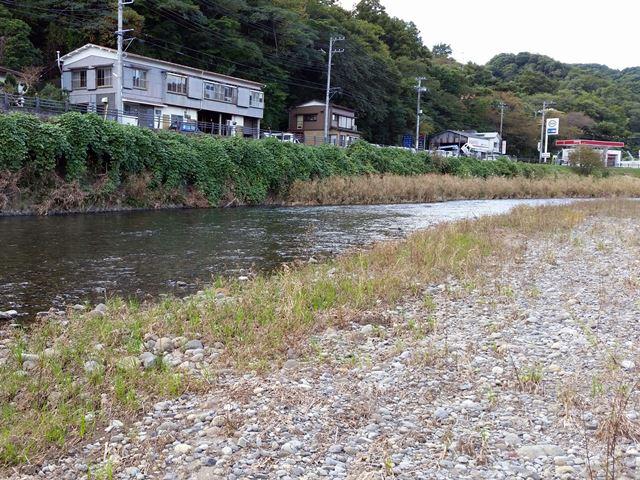 2_1104kawazu_r1.jpg