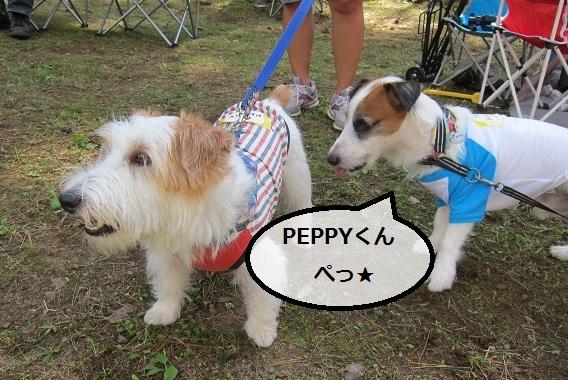 PEPPYくん