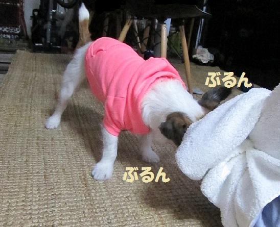 ぱちくんP2