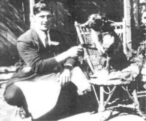 世界で一番長生きした犬