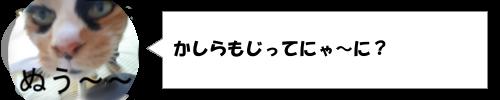 KAT-TUN(カトゥーン)の名前の由来
