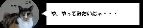 奈良県でリアルマリオカートが発見された