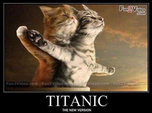 もしもタイタニックの主人公が猫だったら
