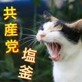 日本共産党塩釜地区委員会
