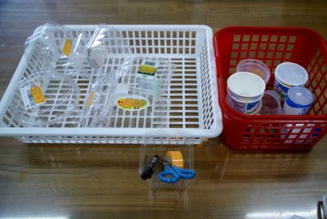 2006-12-27 25年度保育のひとこま幼虫カップ入れ・たけのこ体操 011 (800x535)
