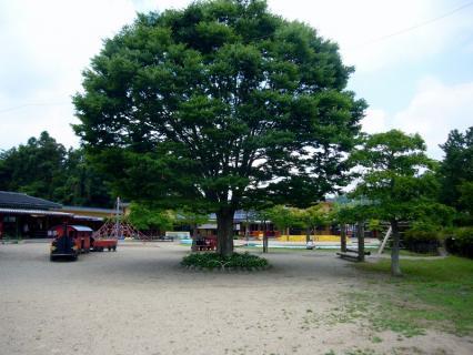 2013-06-17 25年度あかみ幼稚園見学 047 (800x600)