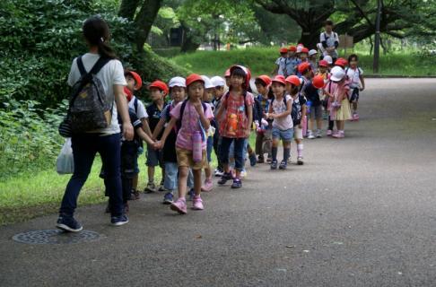 2007-01-24 25年度年長菖蒲見学25年6月25日 002 (800x526)