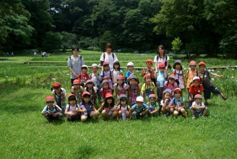 2007-01-24 25年度年長菖蒲見学25年6月25日 035 (800x536)