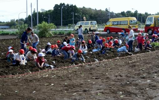 2007-05-24 25年度10月23日芋ほり遠足緑・黄・桃1・誕生会 027 (800x504)