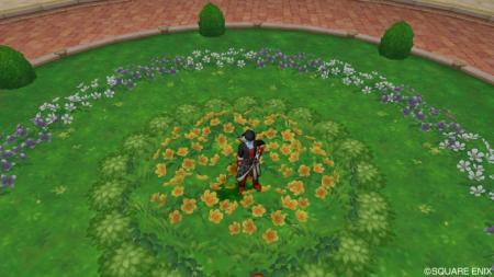 メギストリスの花畑R