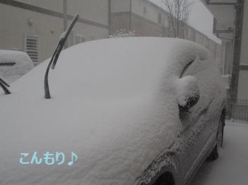 P2080128.jpg