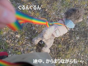 P2170361.jpg