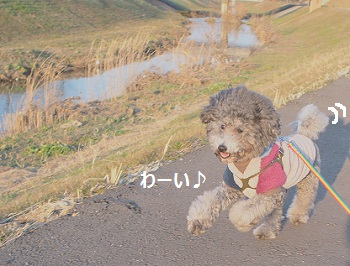 P2170380.jpg