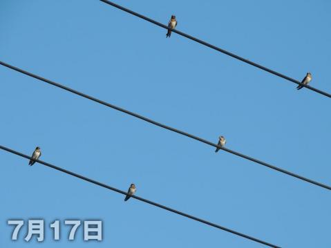 13-07-31-F04.jpg