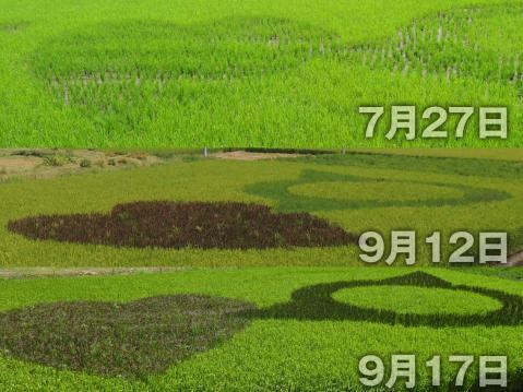 13-09-18-F08.jpg
