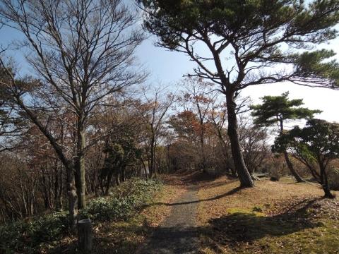 13-11-11-H08.jpg