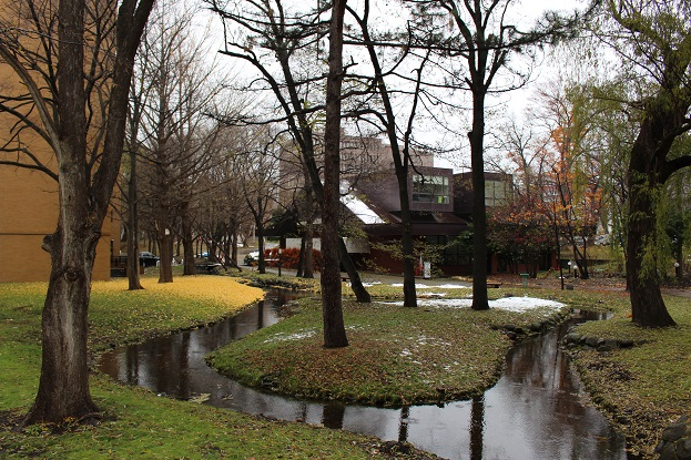 2014北海道旅行:北海道大学