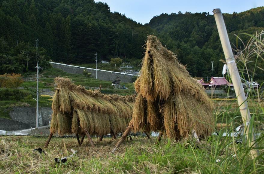 2013 09 21  平林稲刈り (38)@S