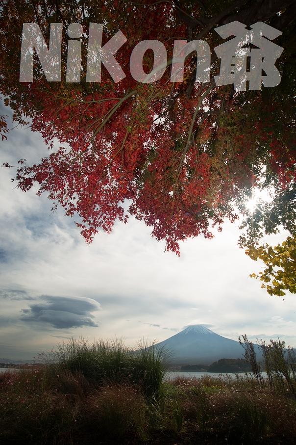2013 11 3 河口湖 吊2 (35)@s