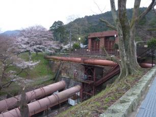 13.04.06 京都旅行 004