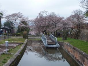 13.04.06 京都旅行 003