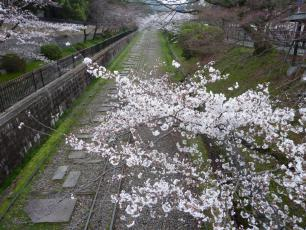 13.04.06 京都旅行 012