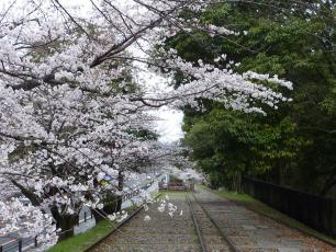 13.04.06 京都旅行 009