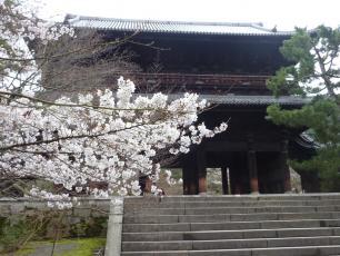 13.04.06 京都旅行 013