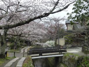 13.04.06 京都旅行 023