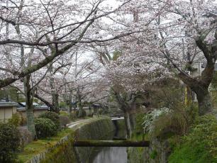 13.04.06 京都旅行 022