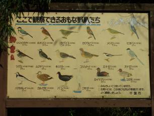 13.09.29 花見川サイクリング 010