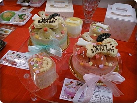 0911ケーキ