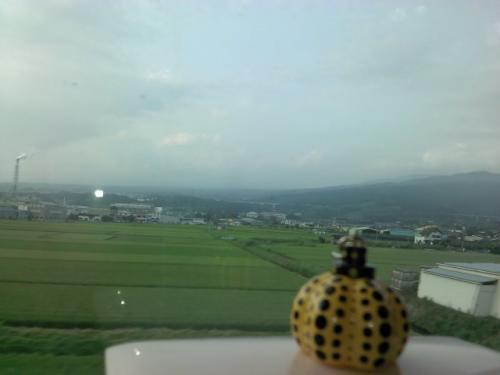 旅する黄色カボチャ