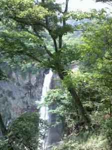 緑の間から華厳の滝