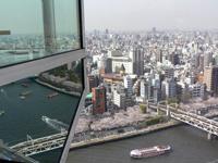 隅田川を見下ろす