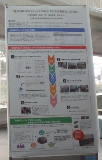 blogPC030665.jpg