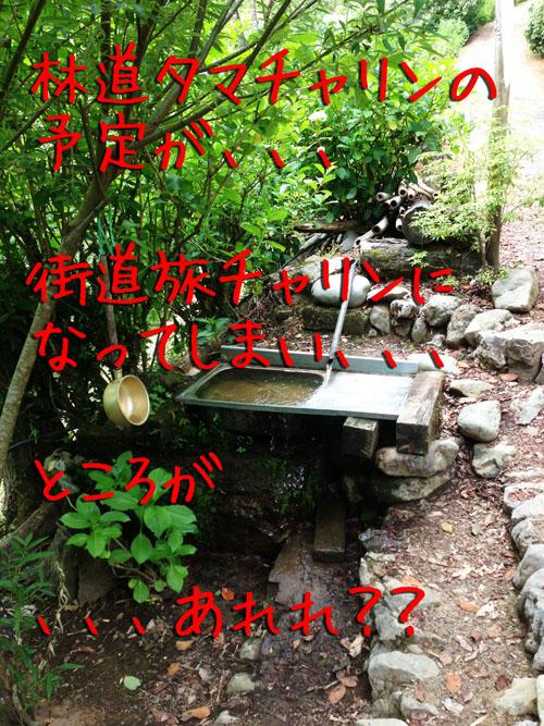 azisaiyama00.jpg