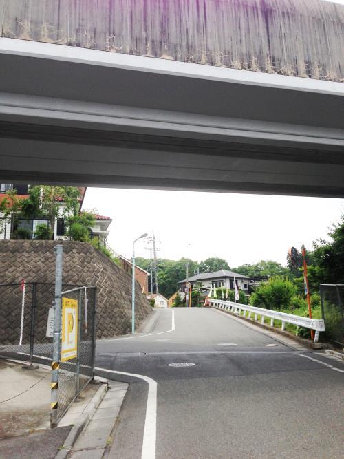 azisaiyama04.jpg