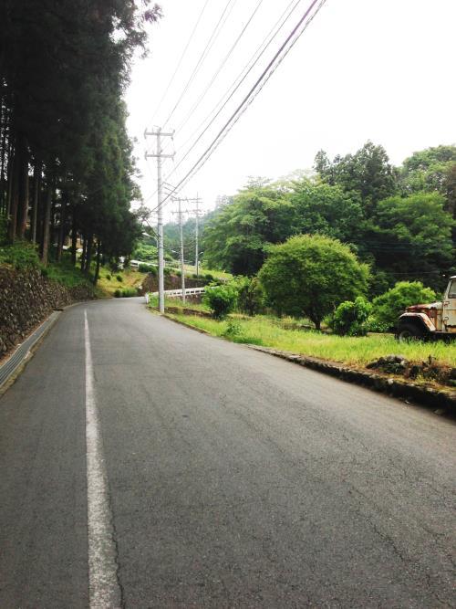 azisaiyama08.jpg