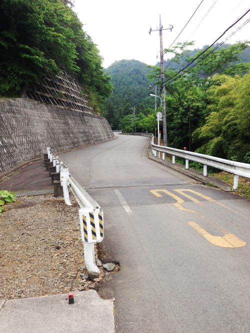 azisaiyama11.jpg