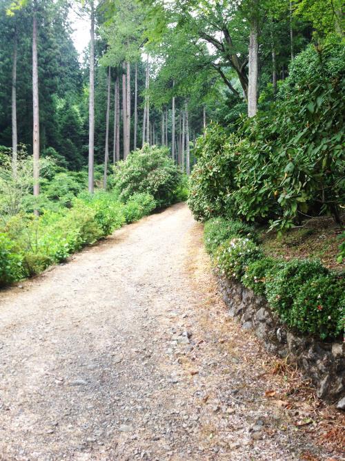 azisaiyama31.jpg