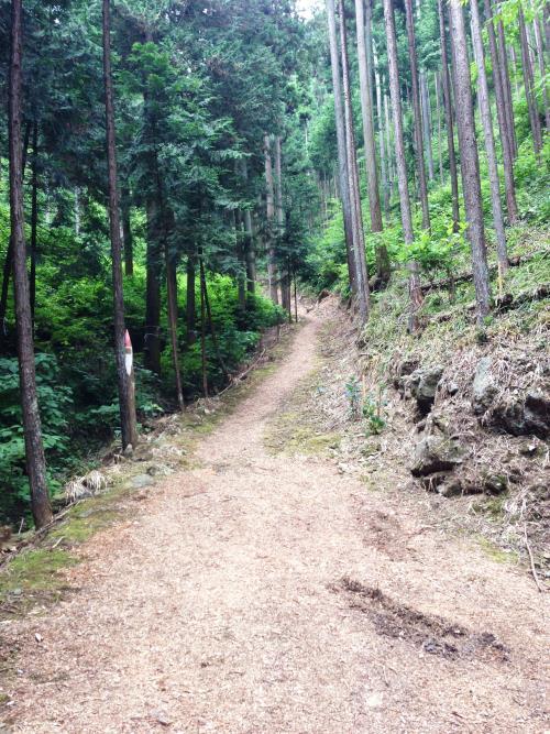 azisaiyama42.jpg