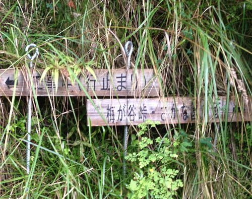 daisawa24B.jpg