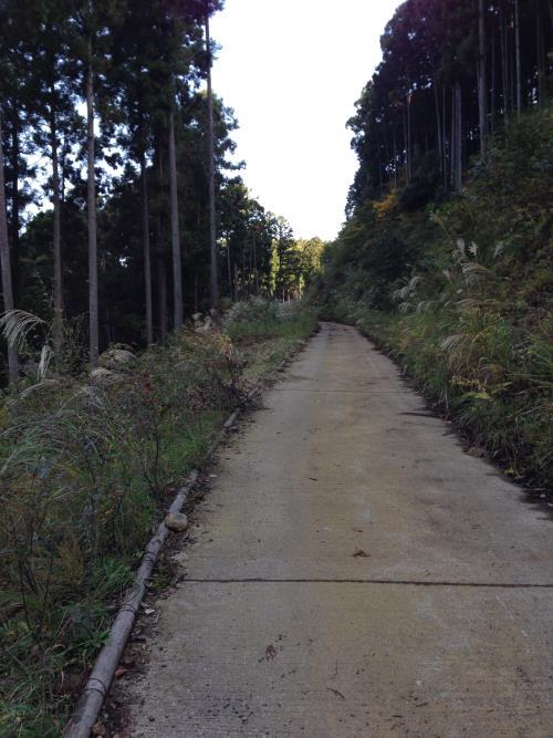 inoshishiA30.jpg