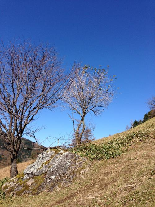 kasatoriyama11.jpg