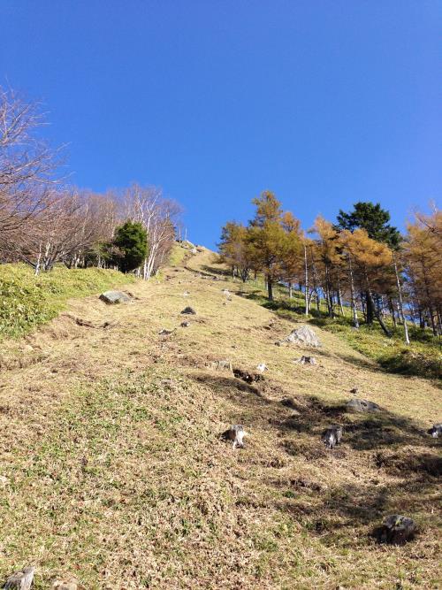 kasatoriyama16.jpg